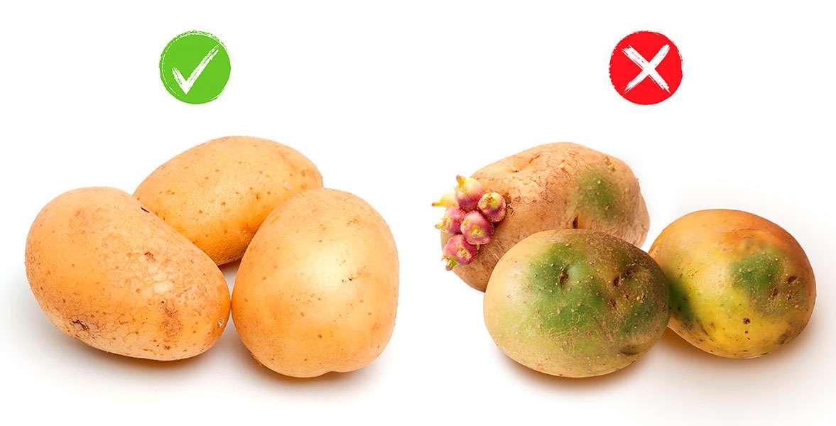 iluminacion-patatas
