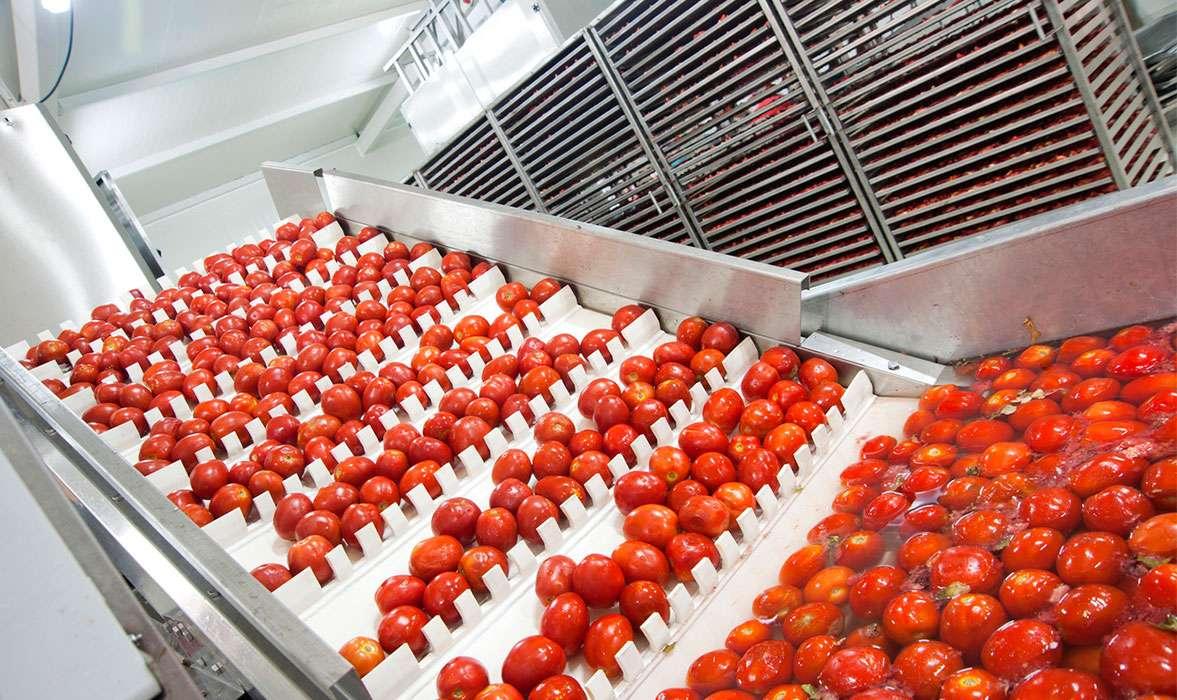 iluminacion-industria-agroalimentaria